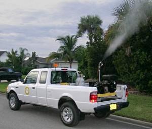 Costambar mosquitoes fumigation