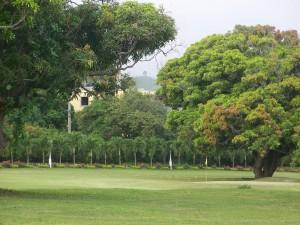 Los Magos Golf Club Costambar